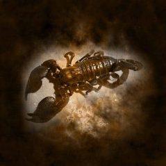 Scorpio zodiac sign image