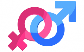 Male and female genders