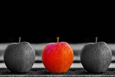 Two gray and one red apple